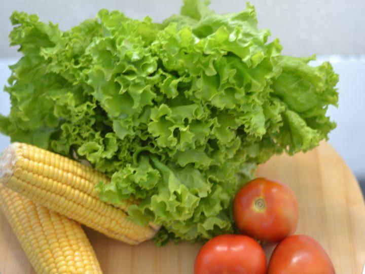 Cara Cerdas Menyimpan Sayur Agar Lebih Tahan Lama dan Tetap Segar