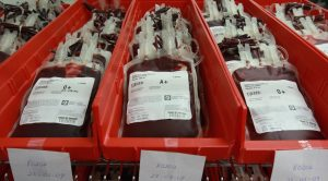 Mengenal Kulkas Blood Bank Refrigerator